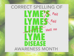 lyme spelling